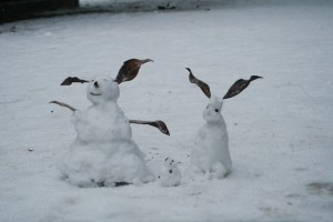 A family of snow bunnies was hopping through the Jardines de Sabatini park behind the palace.