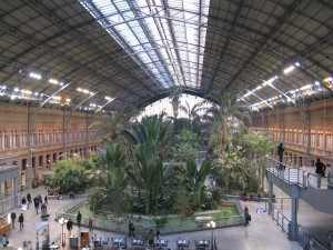 The Rainforest in Atocha Station